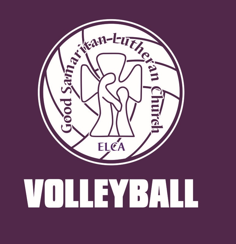 volleyball shirt - logo detail